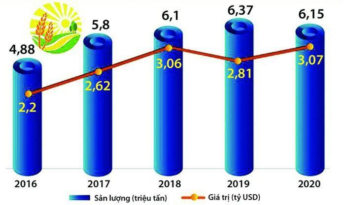 Nghịch lý thị trường xuất khẩu gạo Việt Nam - ảnh 1
