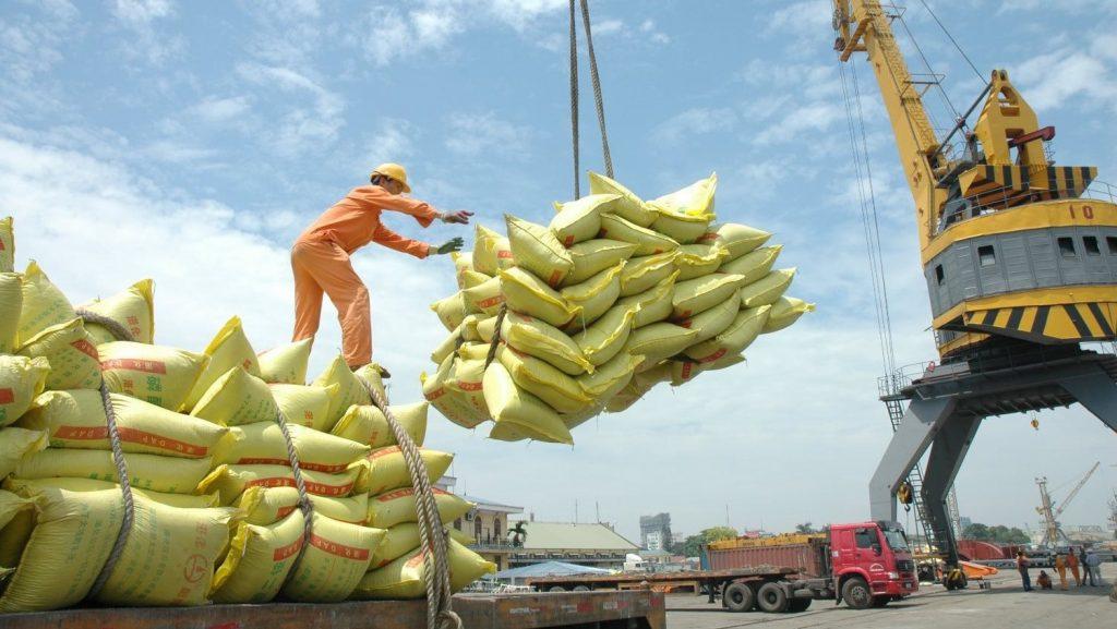 Nghịch lý thị trường xuất khẩu gạo Việt Nam - ảnh 2